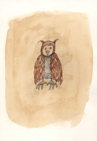 E12038LH_owlscan